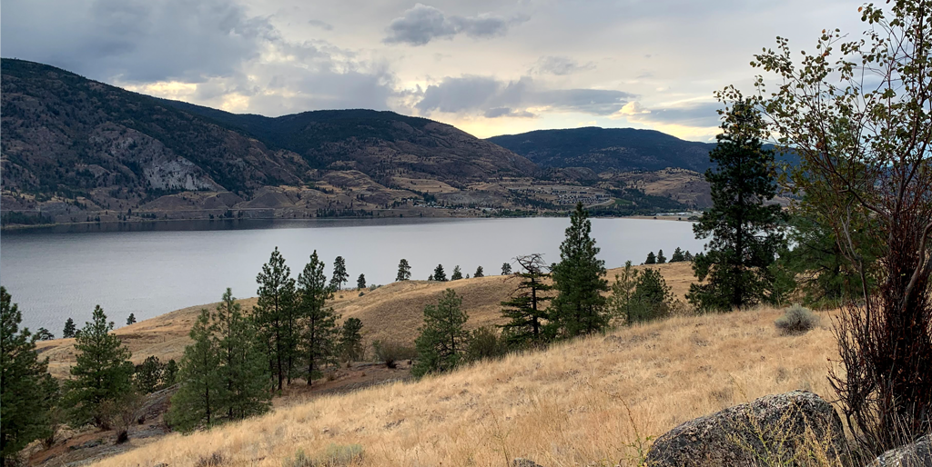 Magnify Digital - kelowna lake